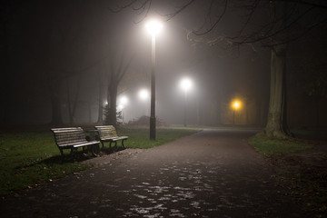 park covered in fog and darkness