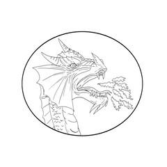 Dragon Fire Circle Drawing
