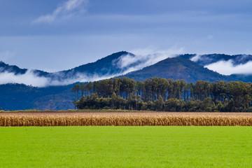 Atherton Tablelands, Australia