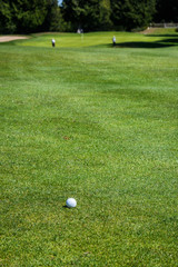 Golf ball in the fairway with out of focus green and people in the background