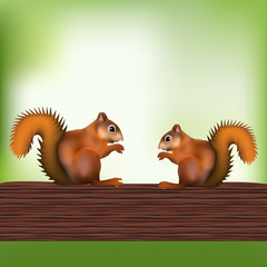 sitting squirrel,sciurus vulgaris,side view vector picture