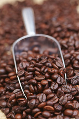 coffee beans on the spoon