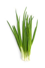 Fresh green onion on white background