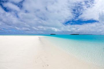 coconut tree on Polynesia beach Wonderful lagoon