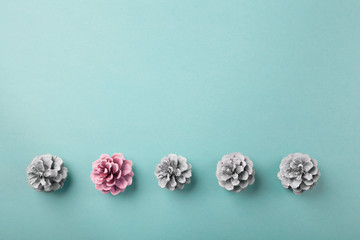 Pink pine cone in a line of white ones, crative flatlay with copy space