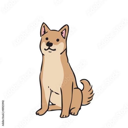 犬 イラスト 柴犬fotoliacom の ストック画像とロイヤリティフリーの