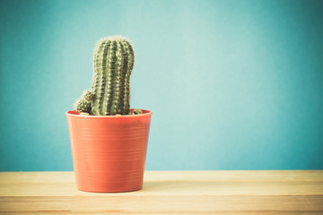 Cactus,Minimal style.