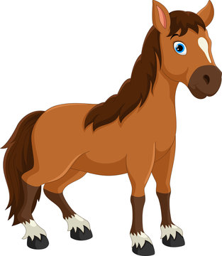 Horse Cartoon Photos Royalty Free Images Graphics Vectors Videos Adobe Stock