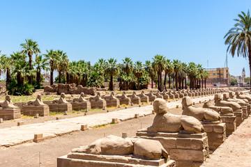 Karnak, Luxor und Edfu Tempel in Ägypten