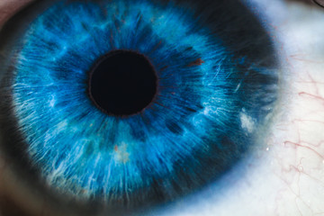Fototapeten Iris An enlarged image of eye with a blue iris, eyelashes and sclera. the shot is made by a slit lamp with a built-in camera