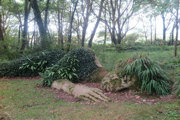 The Lost Garden of Heligan - Cornwall