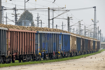 sugar beet and freight train