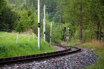 Scenic railway between the trees