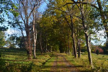 Pretty landscape of worlds end in Hingham Massachusetts