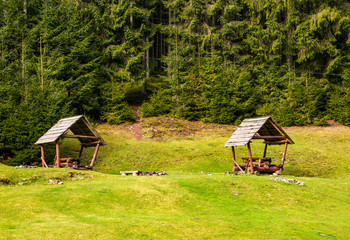 camping place on a glade in forest. lovely leisure scenery with two empty gazebos