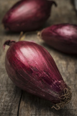Tropea red onion on wood background