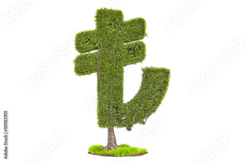 Money Tree In The Shape Of Lira Symbol 3d Rendering Stock Photo