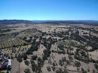 Campos de Cumbres de Enmedio, municipio español de la provincia de Huelva (Andalucia,España)