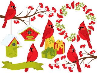 Vector Christmas and New Year Set with Cardinals and Winter Elements
