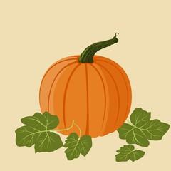 Editable Pumpkin Vector Illustration for Thanksgiving Day