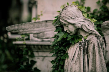 Statue in an old cemetery