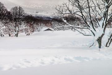 White Snow covered land at Mt. Hakkoda, Aomori, Japan