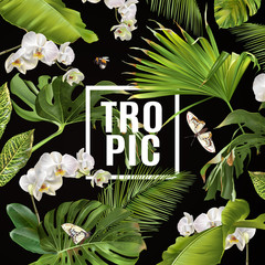 Tropical orchid banner