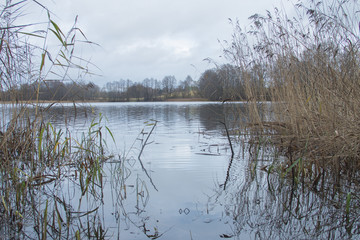 The place of a fisherman on the bank of the river, the lake in the autumn among the reeds