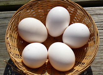 five fresh eggs in a wicker basket to cook for Easter