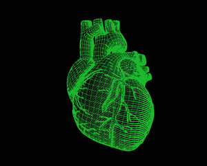 Green human heart digital wireframe isolated on dark BG