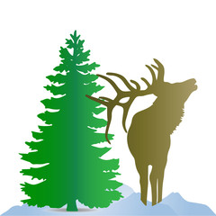 Silhouette of a brown deer (northern), near a green Christmas tree, on the snow, on a white background,