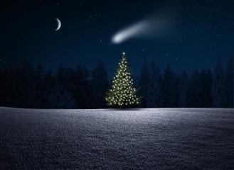 Wall Mural - Weihnachtsbaum im Wald bei Nacht