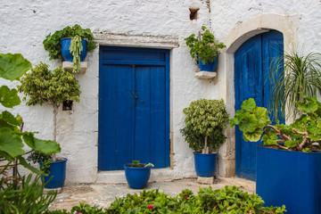 Blaue Tür, Blue door, Pflanzen