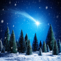 Christmas Star Shotting In Snowy Night On Silent Forest