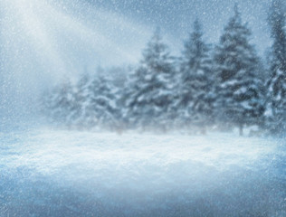Snowfall in the forest. Christmas night. New Year background. Blurred background.