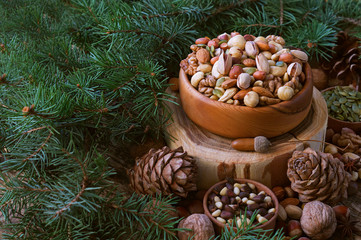 Christmas arrangement of pine, cashew, almond, hazelnuts, peanuts, walnuts, tree branches, cones.  background. A mix  nuts.