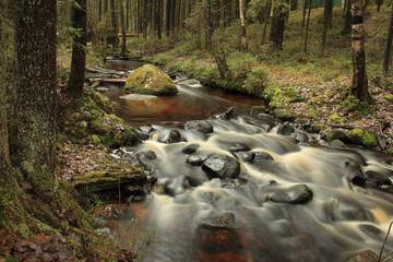 cascade fast forest river, picturesque landscape, long exposure