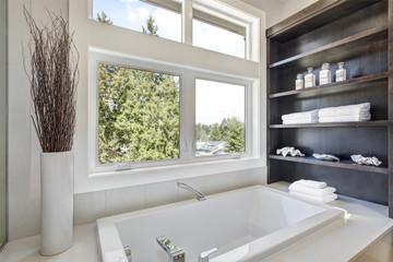 Bathroom interior with a drop in tub.
