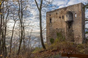 Jena - Ruine Lobdeburg_3