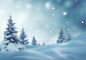 Wall Mural - Christmas background with fir trees and blurred bokeh.Winter landscape
