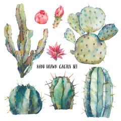 Watercolor cactus illustration. Hand drawn desert plants on white background. Flowering cacti set