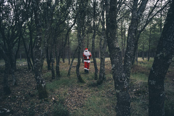 Santa Claus for the forest.