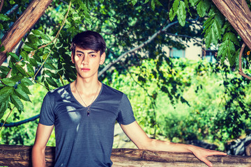Growing with Nature. Asian American college student studying in New York. 20 years old young man wearing dark gray v neck T shirt, standing in green woods on campus, confidently looking forward. .