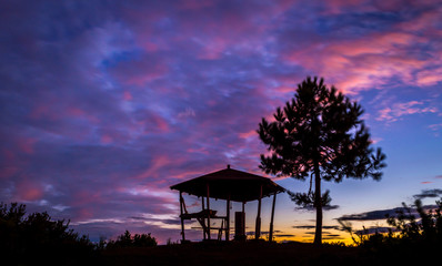 Tree and kiosk silhouettes  against a beautiful colorful sunset.