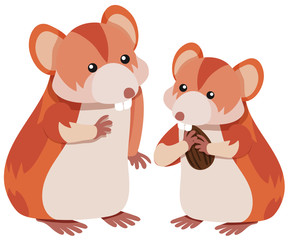 Two hamsters eating almond