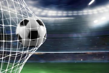 Soccer ball scores a goal on the net Fotomurales
