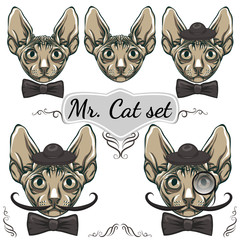 Cats set. Gentleman in a hat with a mustache