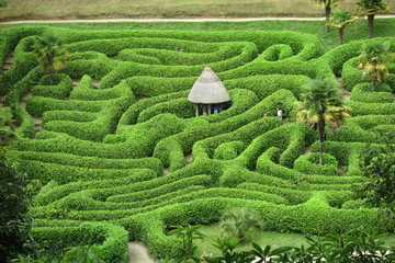 Glendurgan Garden - Cornwall