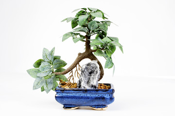 Bonsai decoration on white background. Plastic plant.