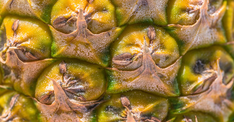 A very close view of a Pineapple skin